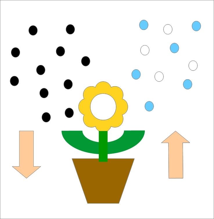pflanzen verbessern das raumklima besseres. Black Bedroom Furniture Sets. Home Design Ideas