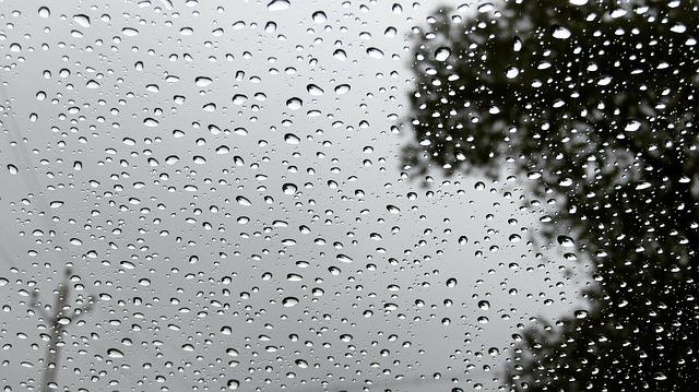Hohe Luftfeuchtigkeit: Wieso Raumtemperatur wichtig ...